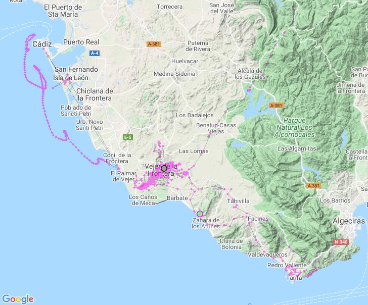 Ruta localización GPS Cerceta Pardilla
